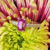 Natural 1.80cts Pink Sapphire & Diamonds Platinum Engagement Anniversary Ring